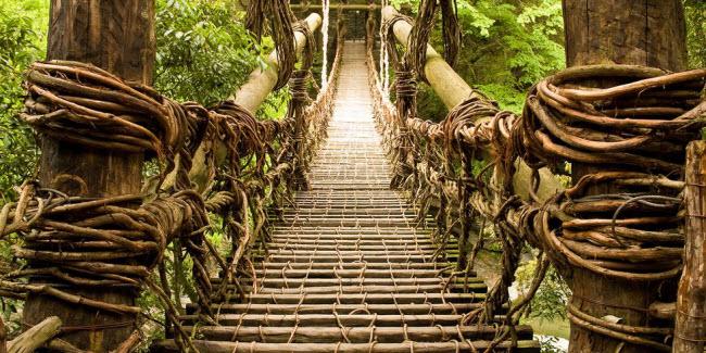 Cầu khỉ Việt Nam nằm trong top 15 cây cầu đáng sợ nhất thế giới - hình ảnh 4