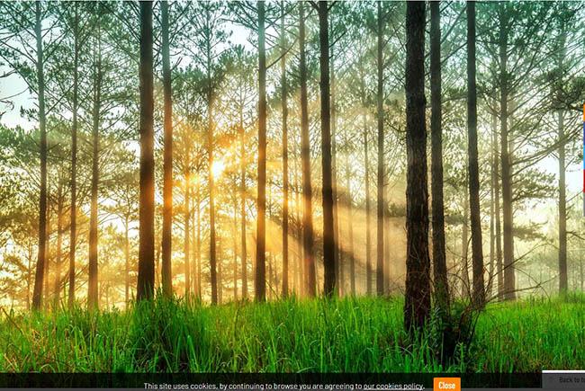 Top những phong cảnh đẹp nhất Việt Nam trong mắt du khách nước ngoài - 2
