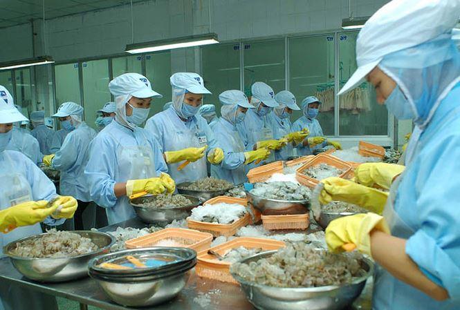 Tôm chế biến của Việt Nam bị phát hiện có chất cấm - 1