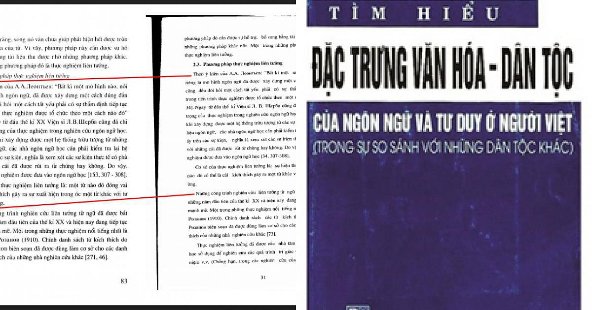 GS Trần Ngọc Thêm: Ông Nguyễn Đức Tồn đạo cả văn của tôi! - 1