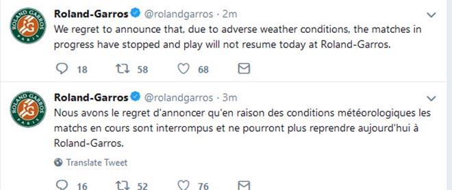 Roland Garros ngày 11: Halep đại chiến Muguruza bán kết, Cilic - Del Potro tạm hoãn - 1