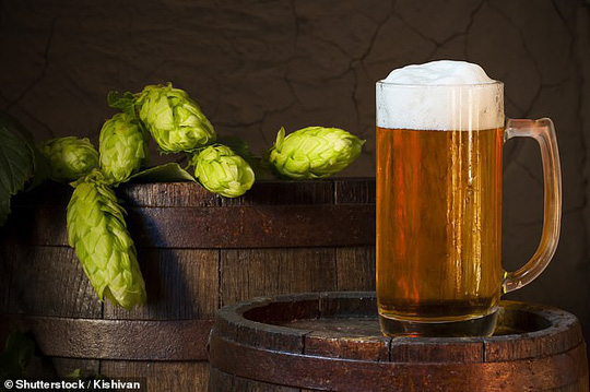 Xác định chất tiêu diệt ung thư gan, ruột trong… bia - 1