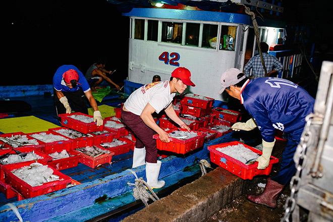 Hành trình chưa đầy 48h từ cảng biển tới bàn ăn của cá biển tại Bách hóa Xanh - 1
