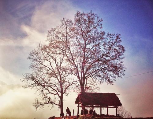 Y Tý - biển mây bồng bềnh đẹp hút hồn dân phượt - 1