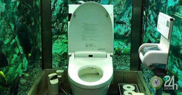 Trải nghiệm đi toilet giữa bể cá khổng lồ tại quán cà phê Nhật