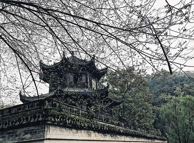 Đâu chỉ có Phượng Hoàng cổ trấn, Trung Quốc còn có Vụ Nguyên đẹp như một giấc mơ - 16