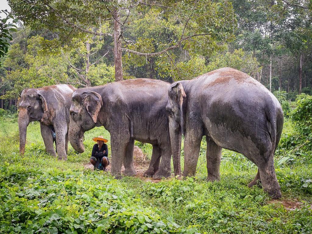 10 địa điểm cực thú vị không thể bỏ qua khi đến Phuket Thái Lan - 9