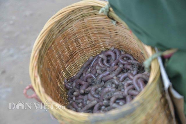 Nghỉ lễ 30.4, đi ăn hết Quảng Ninh với những đặc sản nức tiếng này - 2