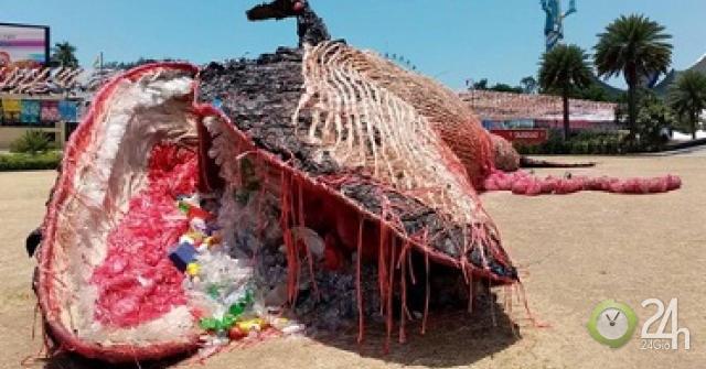 """Thông điệp từ """"Tiếng khóc của cá voi chết"""""""
