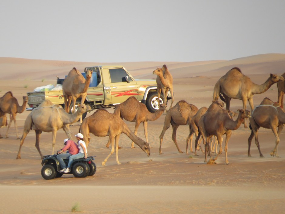 Đến Dubai không chỉ để