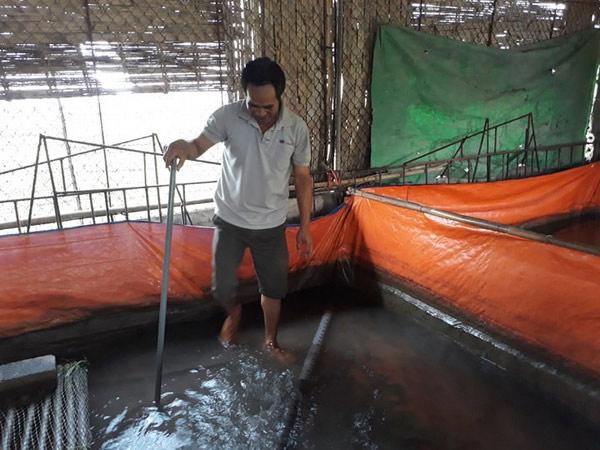 Hưng Yên: Lót bạt nuôi lươn không bùn, nông dân có thêm tiền tiêu - 1