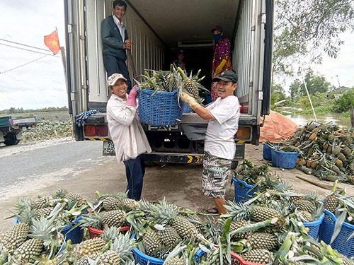 Xuất khẩu rau quả kì vọng xác lập kỉ lục mới: Vẫn chưa hết lo - 1