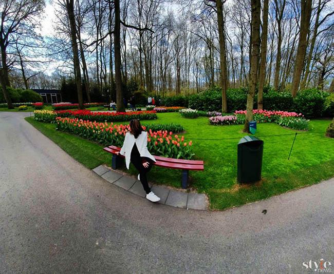 """Vẻ đẹp mê hoặc của """"khu vườn cổ tích"""" Keukenhof tại Hà Lan - 8"""