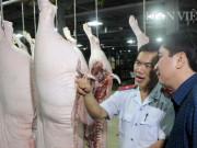Giá heo hơi 20/5: Tin vui giá lợn hơi miền Nam đang tăng lên