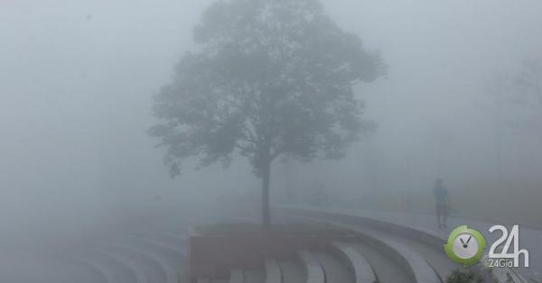 Ảnh: Sương mù giăng kín lối, Tam Đảo đẹp tựa trời Âu
