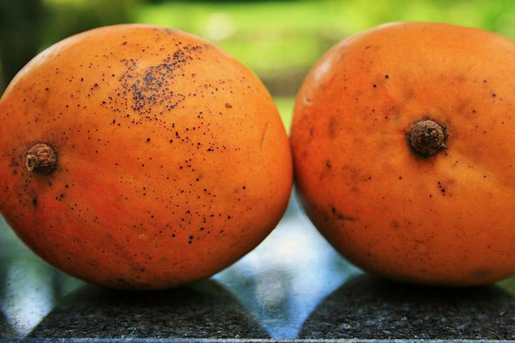Ngày nào cũng ăn loại quả này có thể ngừa ung thư, giảm khả năng bị đột quỵ - 7