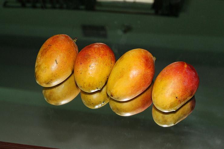 Ngày nào cũng ăn loại quả này có thể ngừa ung thư, giảm khả năng bị đột quỵ - 9