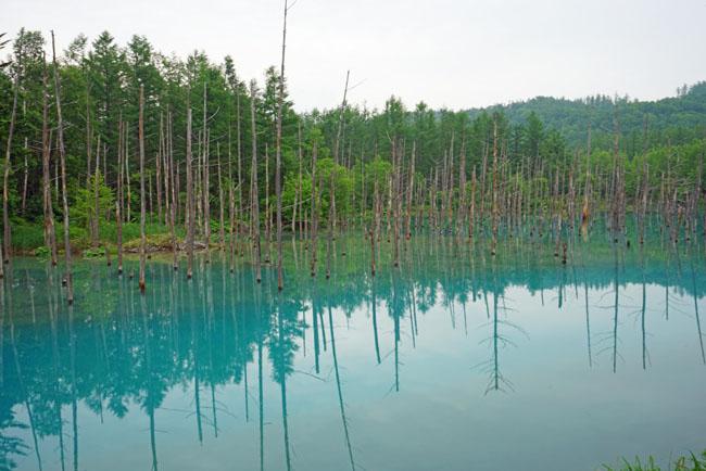 9 địa điểm đẹp đến nín thở ở Nhật Bản nhưng hay bị du khách bỏ qua - 9