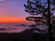 Đón bình minh bồng bênh mây trắng tựa 'cõi thiên thai' ở Hòn Bồ