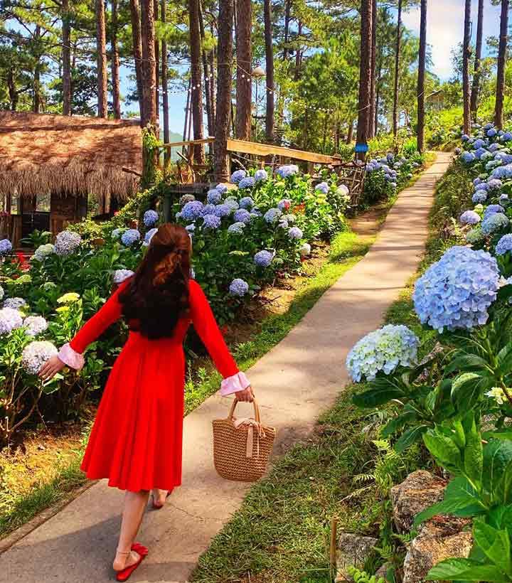 Happy Hill – 'Vườn cổ tích' nằm bên Hồ Tuyền Lâm - 2