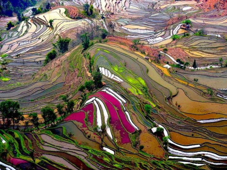 Những lý do khiến bạn nhất định phải tới Trung Quốc một lần trong đời - 6