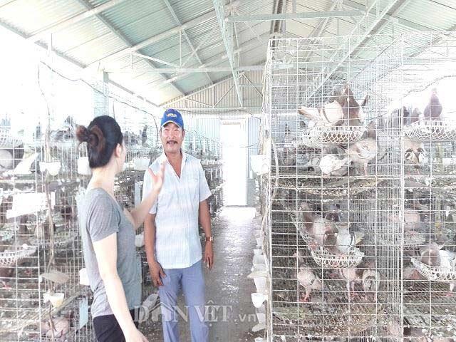 Hà Tĩnh: Xây lầu cho chim ở, mỗi tháng bỏ túi hơn 20 triệu đồng - 4
