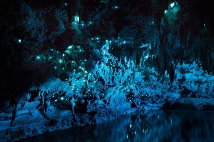 Hang động kỳ ảo nhất New Zealand khiến du khách trố mắt - 9
