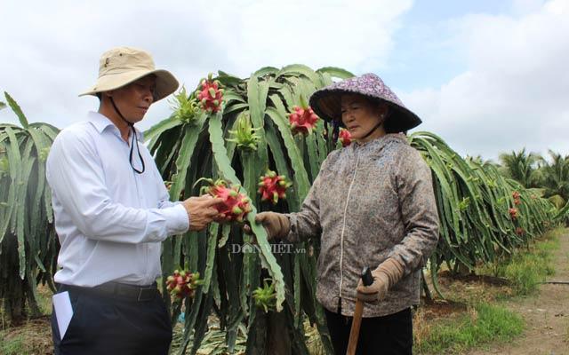 Xuất khẩu rau quả sang Trung Quốc: Hấp dẫn nhưng vẫn bí thông tin - 3