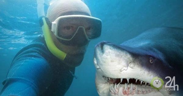 Hành động quen thuộc gây chết người nhiều gấp 5 lần so với bị cá mập tấn công-Thế giới