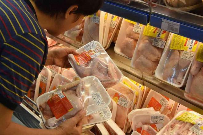 'Sốc' với giá gà rẻ như rau chỉ 8.000 đồng/kg - 1
