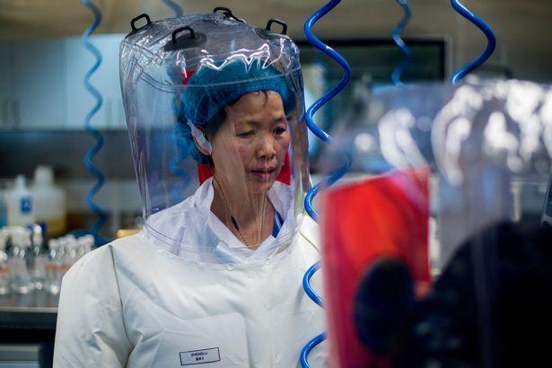 Hình ảnh hiếm bên trong viện nghiên cứu virus Vũ Hán - 2