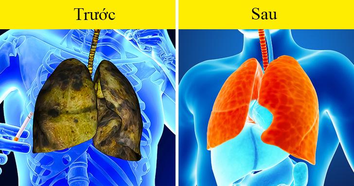 """Có 5 dấu hiệu này chứng tỏ phổi của bạn đang """"kêu cứu"""", tuyệt đối không được chủ quan - 6"""
