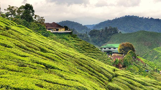 Đừng bỏ qua 7 điểm đến hút khách nhất Đông Nam Á này - 3