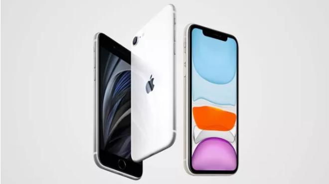 iPhone 11 liệu có còn đất sống khi iPhone SE 2020 được lên kệ? - 2