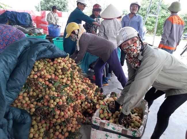 Cảnh buôn bán vải sớm đầu mùa tấp nập tại Thanh Hà
