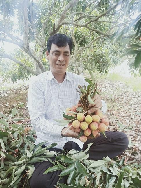 Ông Phạm Công Long vui mừng vì được một vụ vải bội thu.