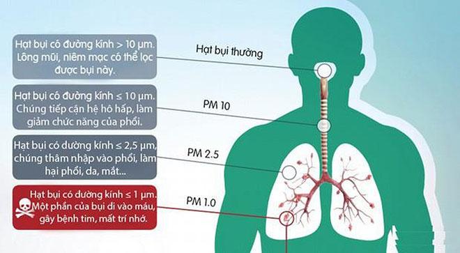 Công nghệ lọc khí nào lọc được bụi mịn PM 1.0? - 1