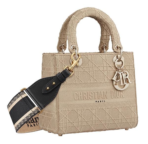 Chiếc túi nhỏ bé của Dior vì sao trở thành niềm khao khát của triệu phụ nữ - 10