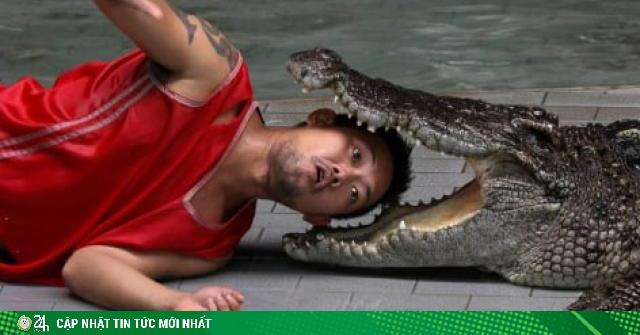 Du khách hết hồn khi tới trang trại cá sấu lớn nhất Thái Lan