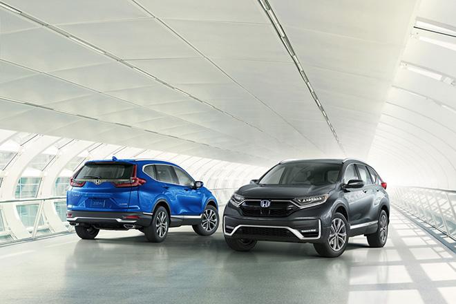 Những mẫu ô tô sắp ra mắt - Honda CR-V 2020