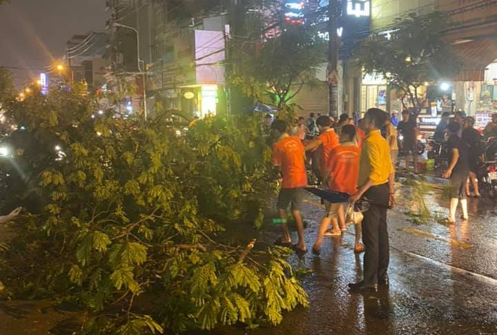 Cây xanh tét nhánh đè chết người ở Sài Gòn - 2