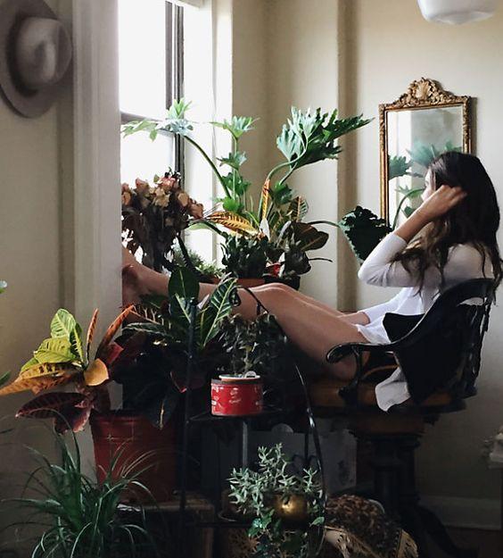 Da đẹp vượt trội, căng mướt nhờ trồng cây trong nhà - 2