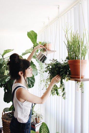Da đẹp vượt trội, căng mướt nhờ trồng cây trong nhà - 3