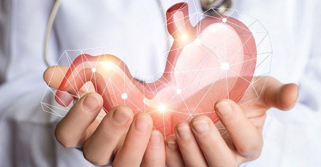 Dạ Vị Khang – Giải pháp mới hỗ trợ điều trị dạ dày - 3