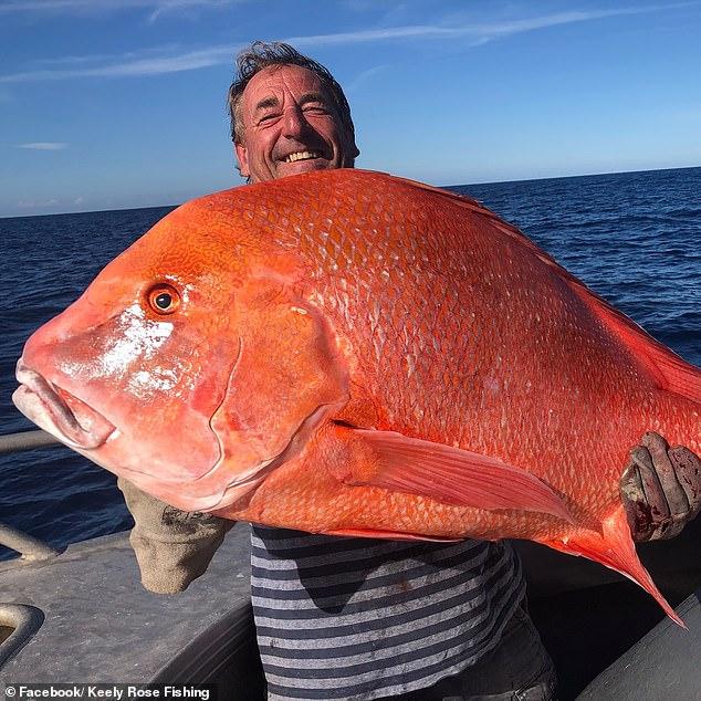 """Câu được cá """"khủng"""" dài 1 mét, nặng 22kg và hành động bất ngờ - 1"""