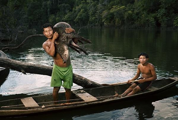 Lạ lùng bộ lạc thường chỉ ngủ 30 phút, không có số đếm sống trong rừng thẳm - hình ảnh 3