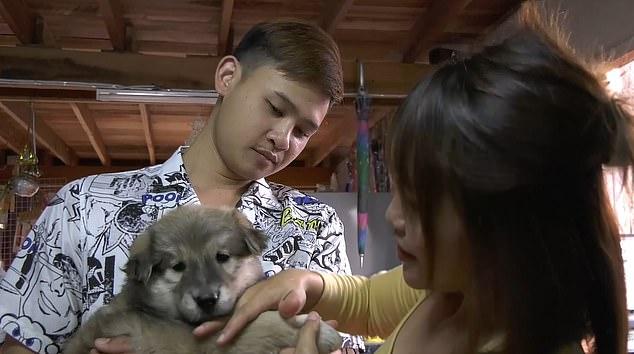 Video: Khoảnh khắc chú chó mở tủ lạnh chui vào nằm tránh nóng - hình ảnh 2