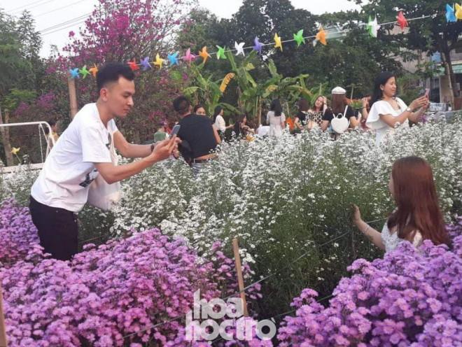"""Teen Đà Nẵng, bạn đã check-in khu vườn """"tím lịm tìm sim"""" giữa lòng thành phố chưa? - 5"""