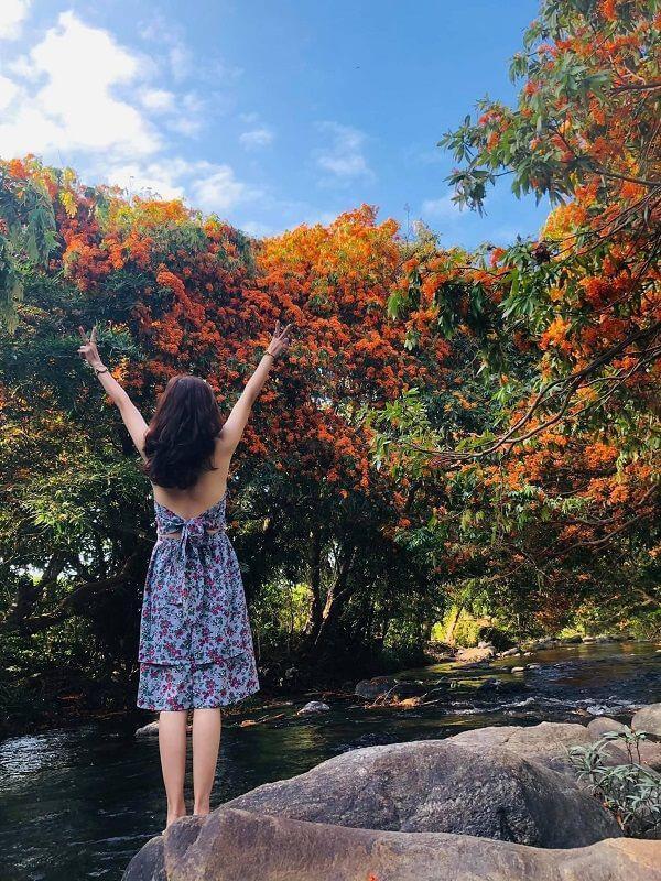 """Hoa trang rừng nở rộ sau nhiều năm, suối Tà Má trở thành điểm """"check-in"""" mới của giới trẻ - 2"""