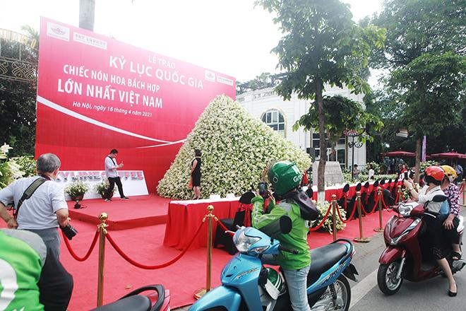 """Xuất hiện nón lá """"khổng lồ"""" bằng hoa loa kèntrên phố Hà Nội - hình ảnh 10"""
